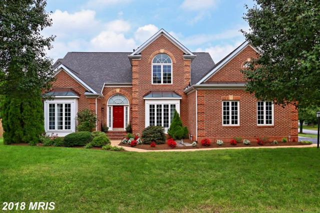 21035 Forest Highlands Court, Ashburn, VA 20147 (#LO10353261) :: Bic DeCaro & Associates