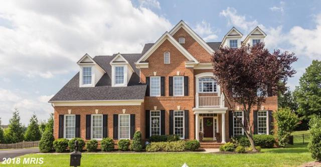 18905 Goose Bluff Court, Leesburg, VA 20176 (#LO10353264) :: Pearson Smith Realty