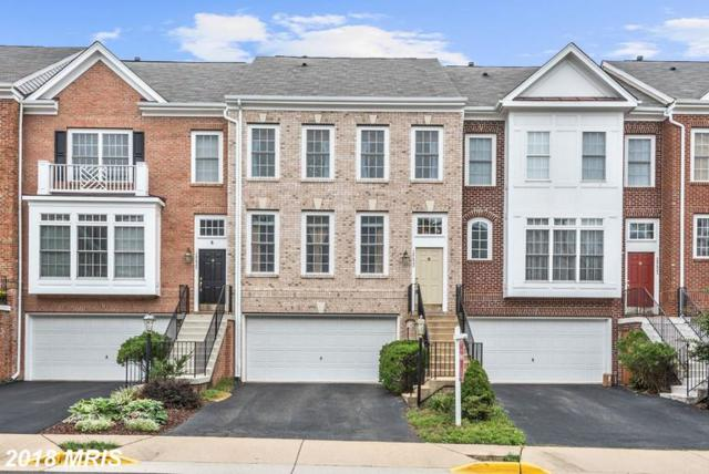 18423 Montview Square, Leesburg, VA 20176 (#LO10353270) :: Pearson Smith Realty