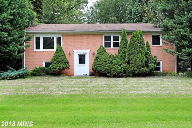19355 Youngs Cliff Road, Sterling, VA 20165 (#LO10353424) :: Pearson Smith Realty