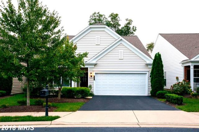 20393 Oyster Reef Place, Ashburn, VA 20147 (#LO10353528) :: Bic DeCaro & Associates