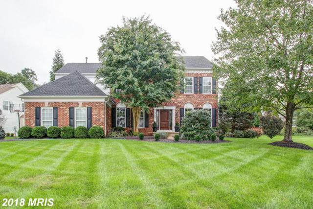 20440 Brightwater Place, Potomac Falls, VA 20165 (#LO10353555) :: The Bob & Ronna Group