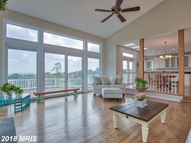 17950 Stoneleigh Drive, Round Hill, VA 20141 (#LO10355364) :: Frontier Realty Group