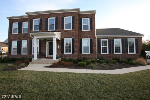 41537 Goshen Ridge Place, Aldie, VA 20105 (#LO9873633) :: LoCoMusings