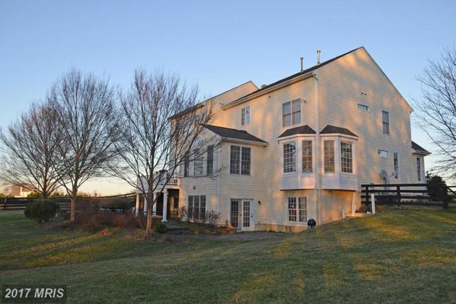 20011 Pleasant Meadow Lane, Purcellville, VA 20132 (#LO9903330) :: Pearson Smith Realty
