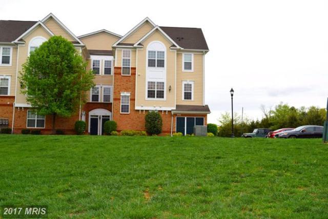 43415 Madison Renee Terrace #102, Ashburn, VA 20147 (#LO9922742) :: LoCoMusings