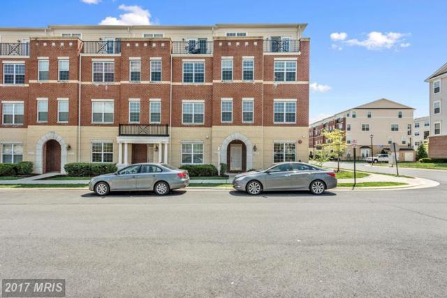 42557 Highgate Terrace, Ashburn, VA 20148 (#LO9923388) :: LoCoMusings