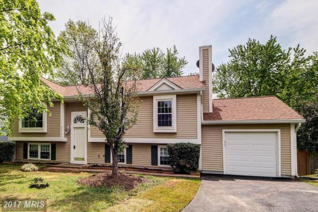 22181 Stablehouse Drive, Sterling, VA 20164 (#LO9930497) :: LoCoMusings