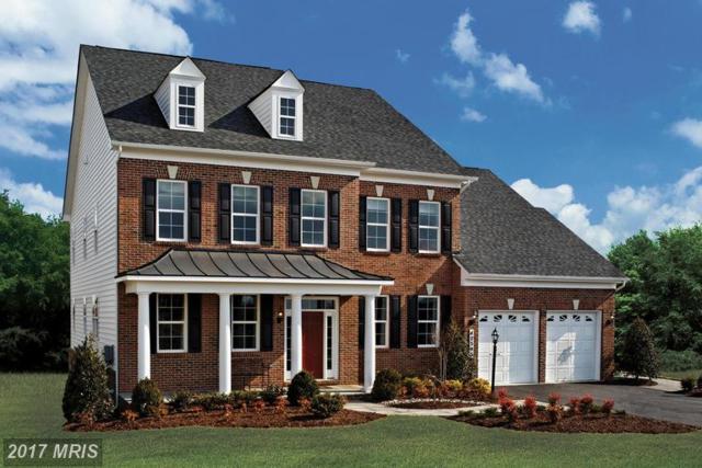 0 Harmony Vista Drive, Hamilton, VA 20158 (#LO9941484) :: LoCoMusings
