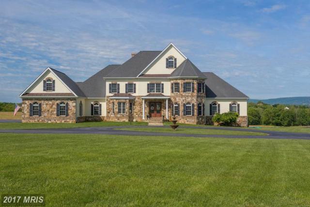 37861 Baker Mill Road, Purcellville, VA 20132 (#LO9943801) :: Wilson Realty Group