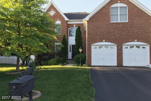42870 Lindsey Heights Place, Ashburn, VA 20148 (#LO9949521) :: LoCoMusings