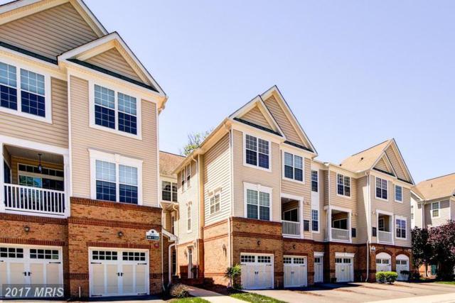 20385 Belmont Park Terrace #109, Ashburn, VA 20147 (#LO9949620) :: LoCoMusings