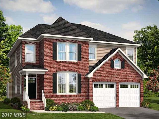 25287 Abney Wood Drive, Chantilly, VA 20152 (#LO9964265) :: LoCoMusings