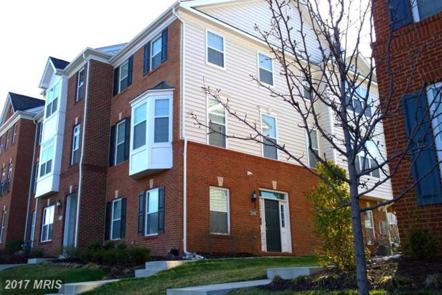 23141 Hanworth Street, Ashburn, VA 20148 (#LO9965873) :: LoCoMusings