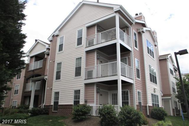 21023 Timber Ridge Terrace #103, Ashburn, VA 20147 (#LO9969417) :: LoCoMusings