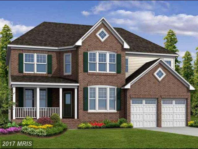 50113 Birnam Wood Place, Brambleton, VA 20148 (#LO9969775) :: LoCoMusings