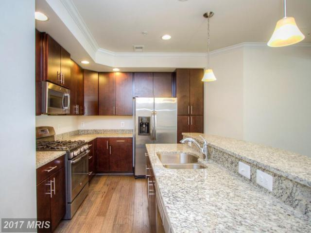 24626 Johnson Oak Terrace, Sterling, VA 20166 (#LO9971900) :: LoCoMusings