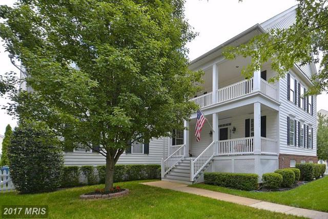 20322 Bowfonds Street, Ashburn, VA 20147 (#LO9972246) :: LoCoMusings