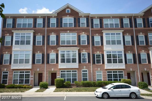 22806 Ferncrest Terrace 18M, Ashburn, VA 20148 (#LO9975131) :: LoCoMusings