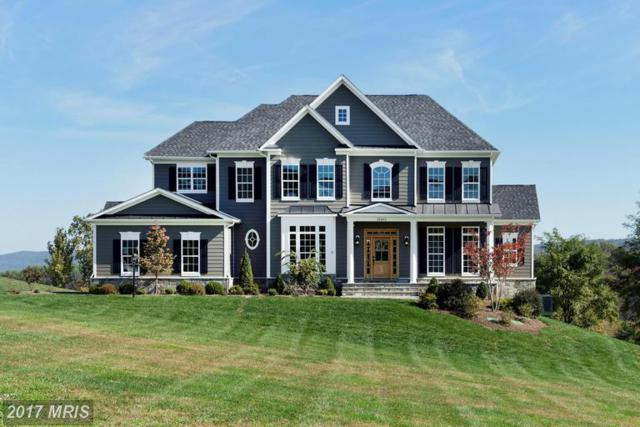 Waterford Crest Place, Waterford, VA 20197 (#LO9978295) :: Pearson Smith Realty