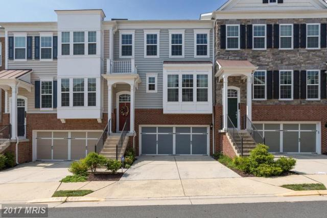 43627 White Cap Terrace, Chantilly, VA 20152 (#LO9978413) :: LoCoMusings