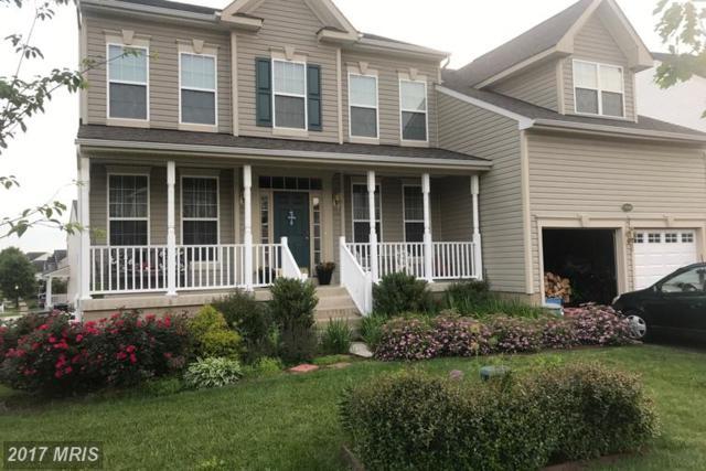 17332 Tedler Circle, Round Hill, VA 20141 (#LO9979682) :: LoCoMusings