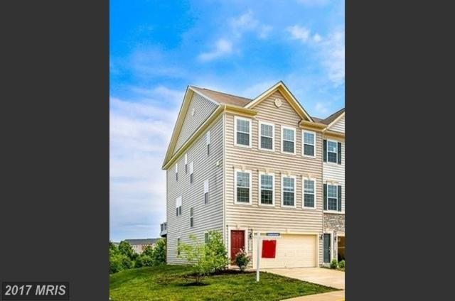 24821 Mason Dale Terrace, Chantilly, VA 20152 (#LO9979883) :: Pearson Smith Realty