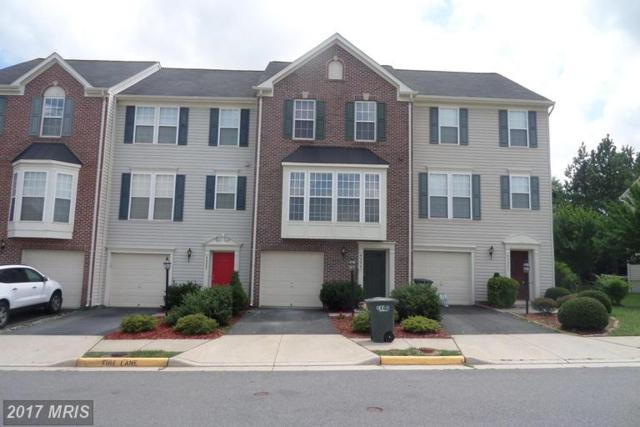 42247 St Huberts Place, Chantilly, VA 20152 (#LO9980771) :: LoCoMusings
