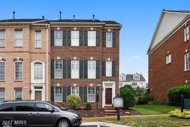 43798 Ballybunion Terrace, Leesburg, VA 20176 (#LO9981962) :: LoCoMusings