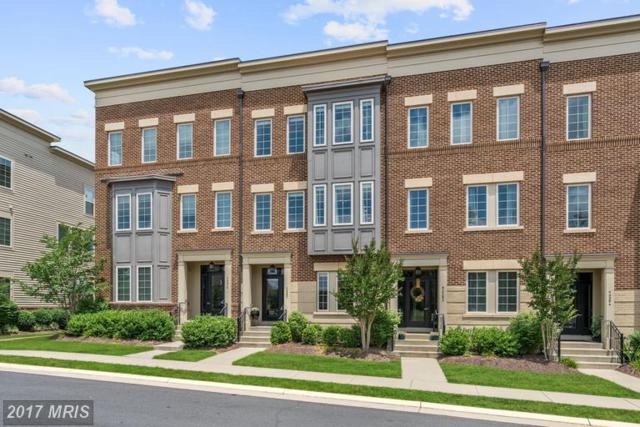 42280 Yancey Terrace, Ashburn, VA 20148 (#LO9983480) :: LoCoMusings