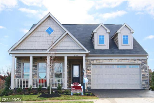 24751 Arapahoe Basin Place, Aldie, VA 20105 (#LO9984117) :: Network Realty Group