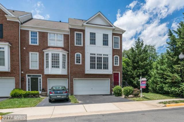 25201 Dunvegan Square, Chantilly, VA 20152 (#LO9984602) :: Colgan Real Estate