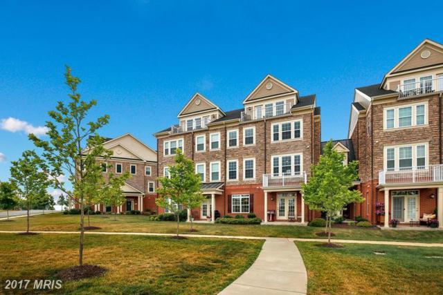 42570 Wildly Terrace, Ashburn, VA 20148 (#LO9984622) :: LoCoMusings