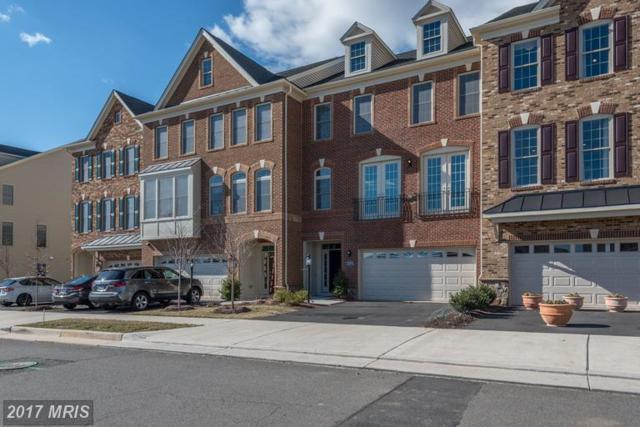 43141 Clarendon Square, Ashburn, VA 20148 (#LO9984829) :: Jim Bass Group of Real Estate Teams