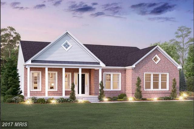 29873 Arapahoe Basin Place, Aldie, VA 20105 (#LO9985084) :: Robyn Burdett Real Estate Group