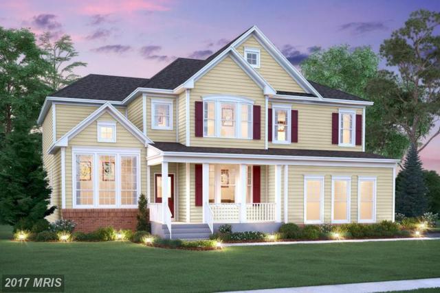 49033 Maplehurst Drive, Aldie, VA 20105 (#LO9985190) :: The Vashist Group