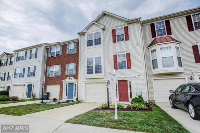 41761 Eloquence Terrace, Aldie, VA 20105 (#LO9985560) :: The Vashist Group