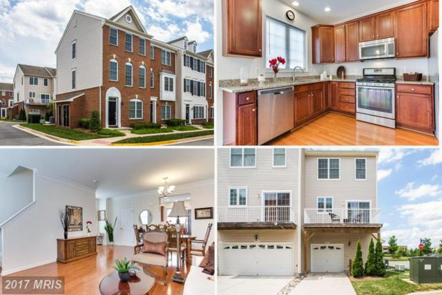 42829 Eggleston Terrace, Chantilly, VA 20152 (#LO9985771) :: RE/MAX Executives