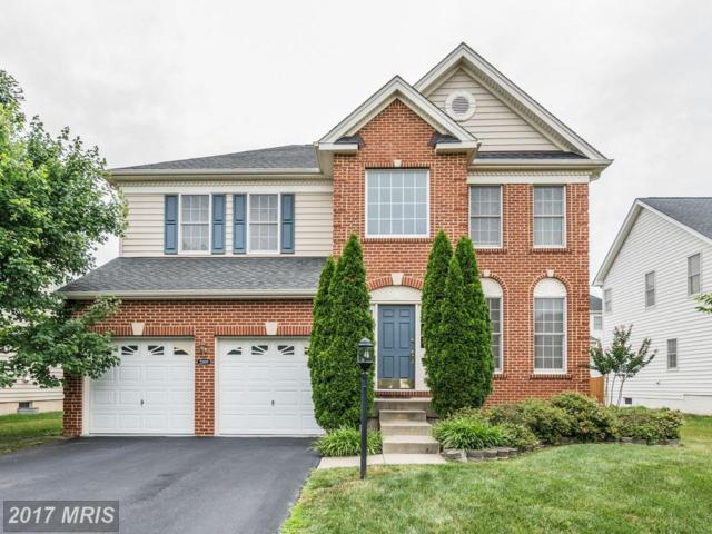22809 Queensbridge Drive, Ashburn, VA 20148 (#LO9985791) :: The Cruz Group