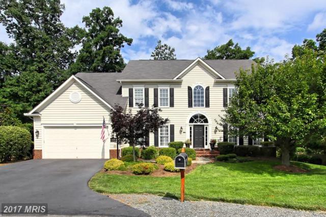 43740 Timberbrooke Place, Ashburn, VA 20147 (#LO9985966) :: The Cruz Group