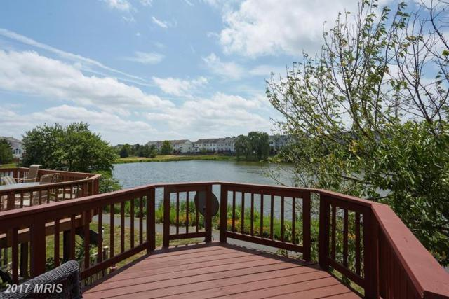 44135 Tippecanoe Terrace, Ashburn, VA 20147 (#LO9986827) :: Dart Homes