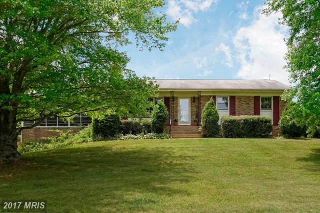 38599 Richard Creek Lane, Lovettsville, VA 20180 (#LO9987282) :: Colgan Real Estate