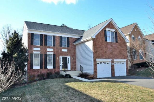 43319 La Belle Place, Ashburn, VA 20147 (#LO9987411) :: LoCoMusings