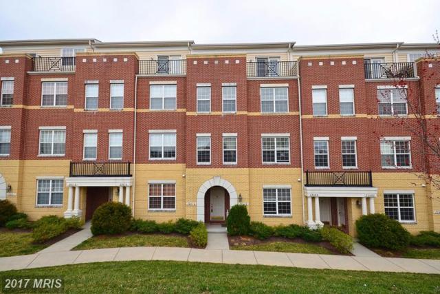 22676 Verde Gate Terrace, Ashburn, VA 20148 (#LO9987602) :: The Belt Team