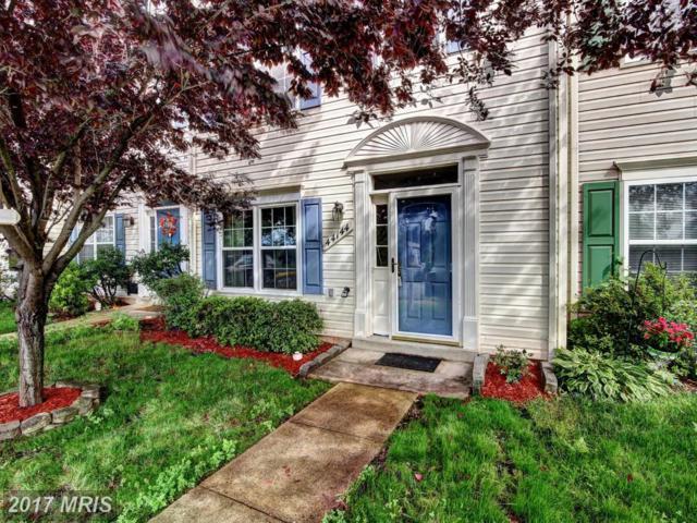 44144 Appalachian Vista Terrace, Ashburn, VA 20147 (#LO9987746) :: Circadian Realty Group