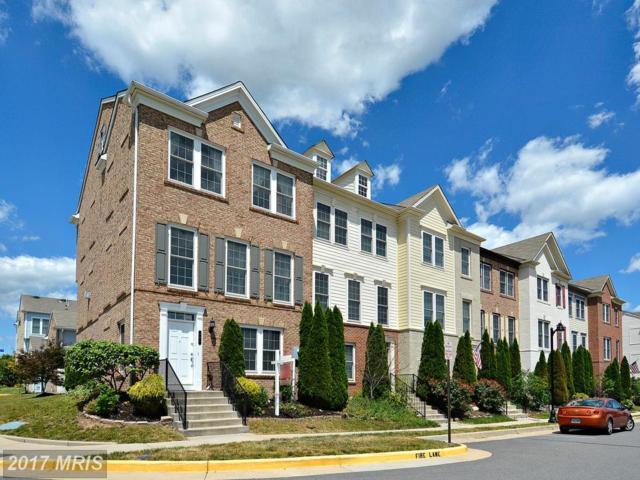 201 Great Laurel Square SE, Leesburg, VA 20175 (#LO9989026) :: Robyn Burdett Real Estate Group