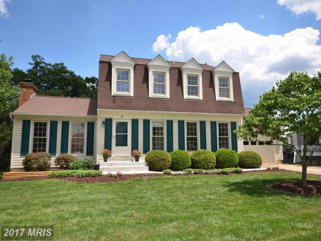 3 Summer Breeze Court, Sterling, VA 20165 (#LO9989697) :: LoCoMusings