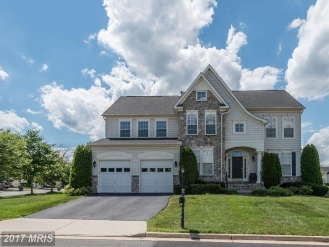 42089 Bear Tooth Drive, Aldie, VA 20105 (#LO9989724) :: Pearson Smith Realty