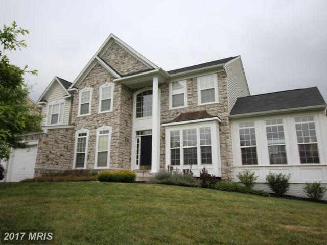 43218 Summersweet Place, Ashburn, VA 20148 (#LO9990446) :: LoCoMusings