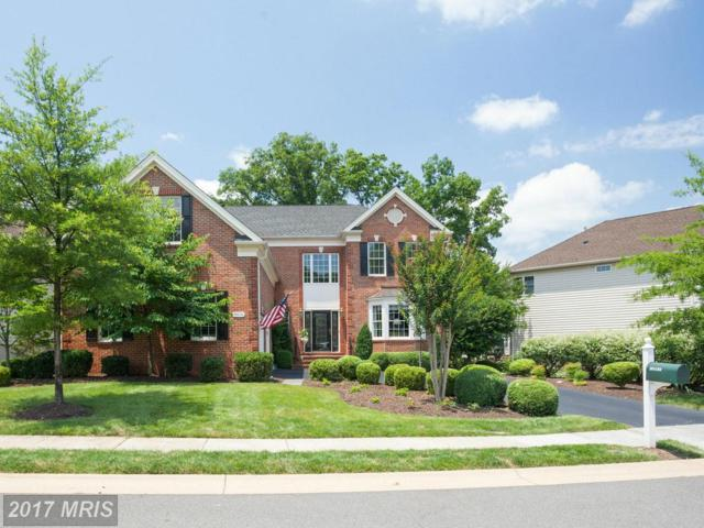 20133 Bandon Dunes Court, Ashburn, VA 20147 (#LO9990573) :: LoCoMusings